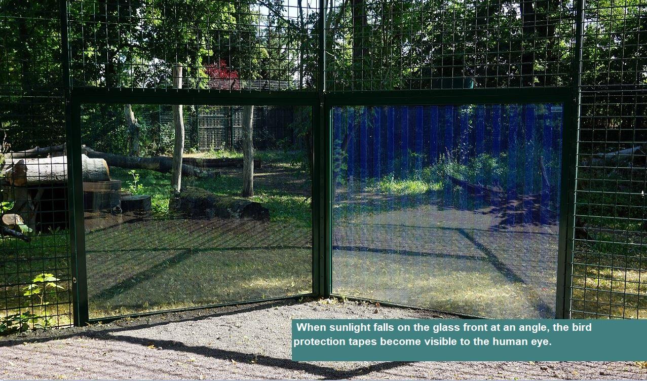 Bear enclosure in the zoo Dessau-Roßlau