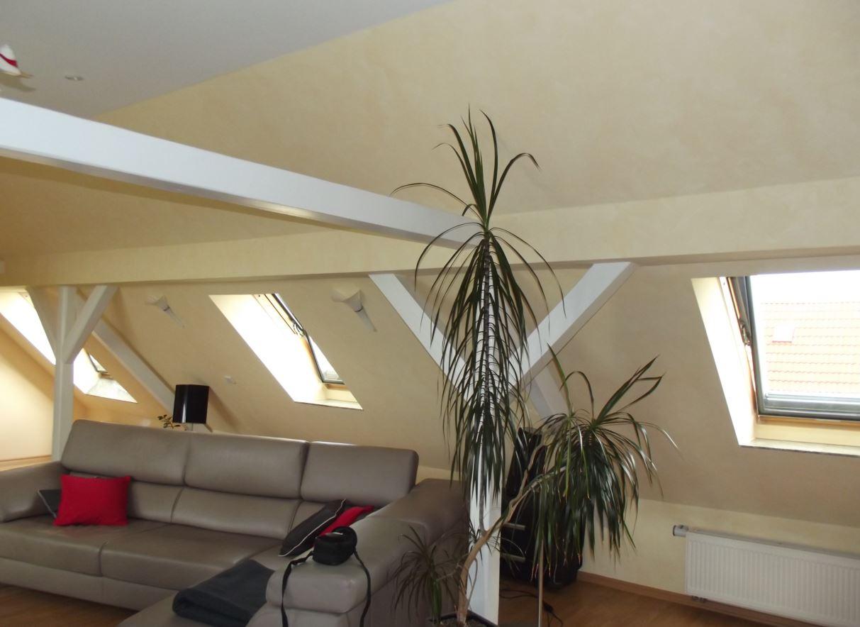 Dachfenster / skylight window